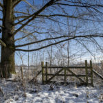 daventry_snow_jan21_pictures55_0008