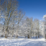 daventry_snow_jan21_pictures55_0012