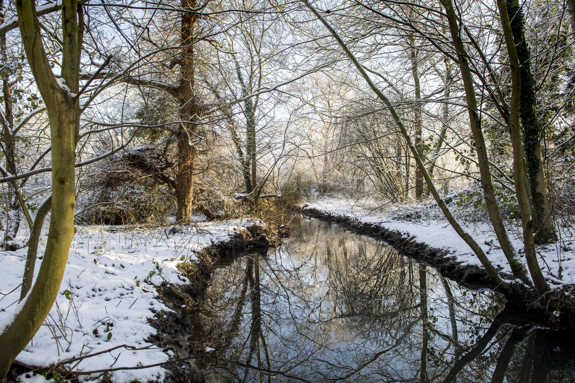 daventry_snow_jan21_pictures55_0014