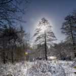 daventry_snow_jan21_pictures55_0028